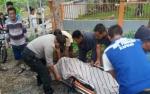Pengendara Motor Tewas Tabrak Pohon di Kapuas