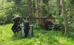 318 Orangutan Berhasil Dilepasliarkan Sejak 2012