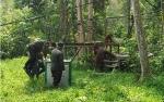 Video BOS dan SSMS Pindahkan 12 Orangutan ke Pulau Salat