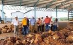 Bupati Barito Utara Meninjau Pabrik Sawit di Sampit