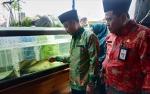 Dinas Perikanan Seruyan Gelar Berbagai Kegiatan Kampayekan Gemar Ikan