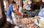 Harga Telur Ayam di Sampit Naik