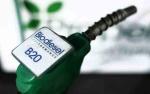Permintaan Biodiesel Tinggi, Berkah untuk Aprobi