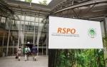 RSPO Tak Mampu Dongkrak Permintaan Minyak Sawit