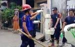 Puluhan Ular Kobra Masuk ke Perumahan Warga