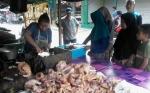 Harga Ayam Potong di Kasongan Naik, Penjualan Tidak Terpengaruh