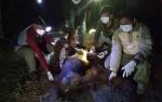 Satu Orangutan Ditemukan Luka Parah Akibat Tembakan Senapan Angin di Seruyan