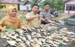Harga Kepiting Rajungan Murah karena Melimpahnya Tangkapan Nelayan