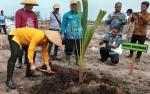 DKPP Sukamara Gelar Tanam Perdana Serai di Sungai Damar