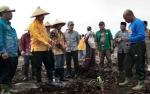 Penanaman Perdana Serai Diharapkan Jadi Tonggak Baru Peningkatan Pertanian