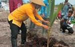 Sukamara Diharapkan Jadi Penghasil Serai Terbesar di Indonesia