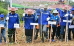 Camat Diminta Intens Perkenalkan Metode Pembukaan Lahan Tanpa Bakar