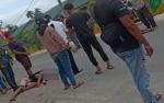 2 Pemuda Mabuk Tabrak Pikap di Sampit