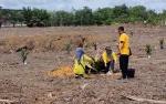 Sukamara Terima Alokasi 1.500 Hektare Program Peremajaan Sawit Rakyat