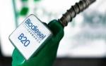 Harga CPO Naik, HIP Biodiesel Jadi Rp 7.914 per Liter