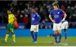 Norwich Hentikan Rekor Kemenangan Beruntun Leicester