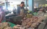 Hasil Ternak Ayam di Kotim Banyak Dijual ke Pangkalan Bun