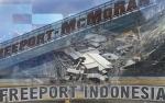 Inalum Minta Penundaan Proyek Smelter Freeport di Gresik