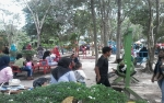 Libur Tahun Baru, Taman Hijau Kasongan Ramai Dikunjungi Warga