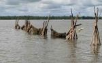 Seorang Nelayan Hilang Tenggelam di Sungai Mentaya