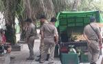 Pedagang Buah dari Luar Kota Pangkalan Bun Dibubarkan Satpol PP