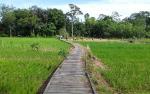 Kadis Pertanian Barito Timur Ingatkan Petani Untuk Aktif Bayar Pajak