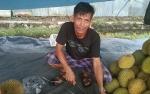 Banjir Durian, Omzet Pedagang di Palangka Raya Menurun