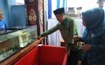BBI Telaga Pulang Intensifkan Budidaya Ikan Pipih