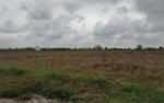 DKPP Seruyan Wajib Dorong Petani Tingkatkan Produksi