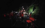 Mobil Avanza Penyok Tertimpa Pohon Tumbang di Pangkalan Bun