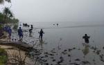 Tanaman Mangrove Berikan Manfaat Bagi Nelayan Sukamara