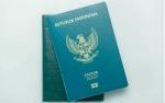 Cara Mudah Urus Paspor Lewat WhatsApp