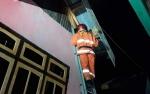 Sejak Awal Januari Damkar Kobar Lakukan 17 Kali Operasi Tangkap Tawon