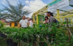 Kembangkan Obor Pangan Lestari Jad Sarana Pemanfaatan Pekarangan Kantor dan Rumah