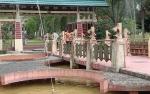 Budidaya Ikan di Pangkalan Bun Park Gunakan Teknologi MBG dan RAS