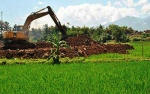 Kementerian Pertanian Berharap Daerah Tolak Alih Fungsi Lahan