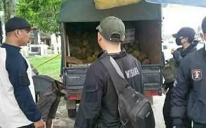 Satpol PP Masih Temukan Pedagang Kaki Lima Jualan Depan Museum Balanga