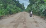 Perusahaan Sawit di Katingan Bangun Jalan di Desa Baun Bango