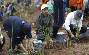 Jokowi Minta Relokasi Korban Longsor, Pemkab Siapkan 81 Ha Lahan