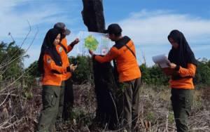 Cegah Karhutla, Daops Mangggala Agni Kalimantan III Pangkalan Bun Mulai Gelar Patroli