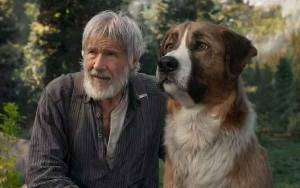 Petualangan Menyentuh Harrison Ford dalam The Call of the Wild