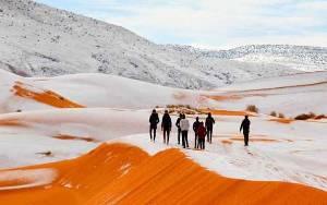Backpacker Dunia Pilih Aljazair Jadi Destinasi Top, Ini Alasannya