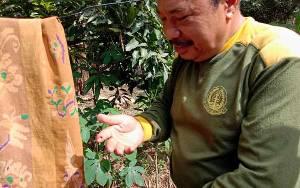 Jari Telunjuk Petugas BKSDA Kalimantan Tengah Digigit Anak Buaya