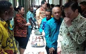 Luhut Ajak Papua Kurangi Investasi Kelapa Sawit