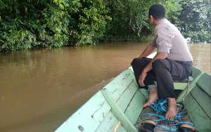 Sudah 5 Hari Korban Tenggelam di Mentaya Hulu Belum Ditemukan