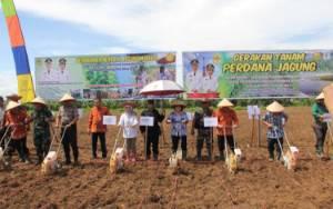 Ini Program Prioritas Pemkab Gunung Mas Disektor Pertanian
