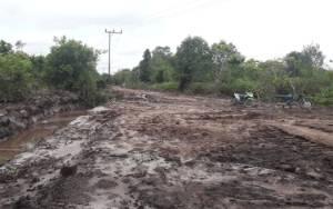 Warga 2 Kecamatan Wilayah Hilir Katingan Sambut Gembira Pembangunan Jalan?