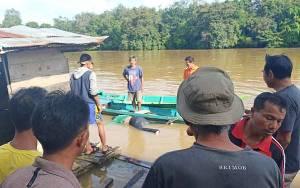 Jasad Korban Tenggelam di Mentaya Hulu Ditemukan 1 Km dari Lokasi Kejadian