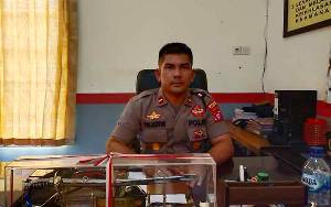 Polisi Masih Cek Kebenaran Buaya Muncul di Sungai Beriwit