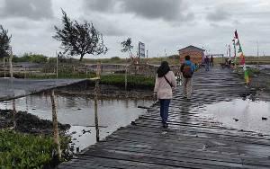 Kecamatan Jelai Harapkan Rehabilitasi Mangrove Dilaksanakan di Sepanjang Pantai